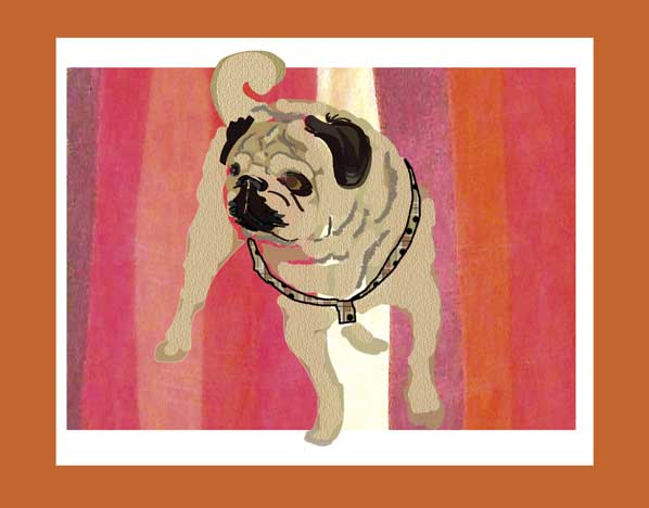 Vector illustration of a pug.